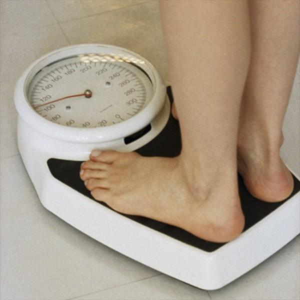 Perdre du poids : Les glucides, les protéines, les lipides, les fibres